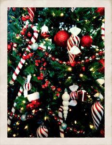 news_christmas_5